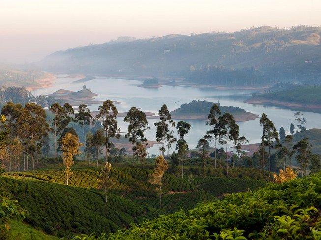 5 Days Tea Holidays in Sri Lanka
