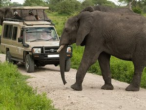 2 Days Guided Safari in Kenya