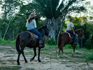 5 Day The Ultimate Jungle Adventure and Horseback Riding Holiday in Benque Viejo del Carmen