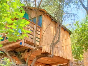 5 Day Art Farm: Digital Detox Camp and Yoga Holiday in Kalamata, Peloponnese