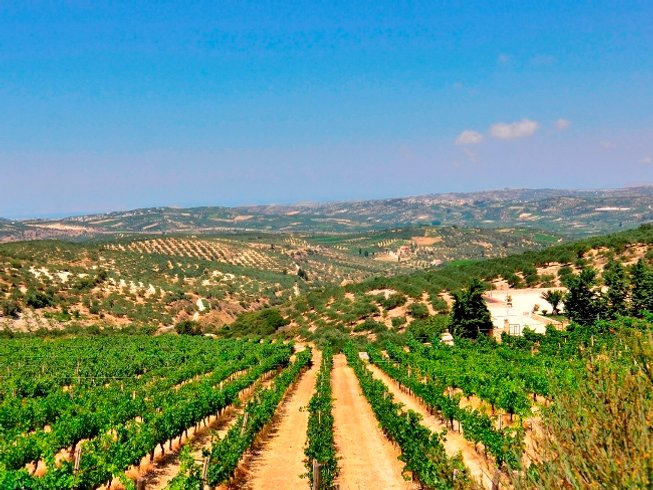 2 Days Secret Aromas of Cretan Wines Holiday in Crete