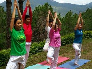 4 días retiro de yoga de Año Nuevo en Da Lat, Vietnam