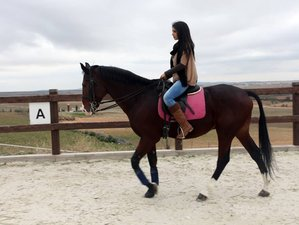 3 Day Stay in a 4-Star Spa Hotel and Horse Riding Holiday in Almonacid de Toledo