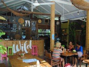 8 Days 'Reboot your Life' Natural Detox Retreat in tropical Koh Samui, Thailand