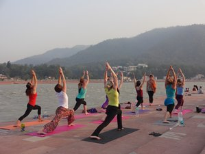 28 Days 200-hour Ashtanga Yoga Teacher Training in Rishikesh, India