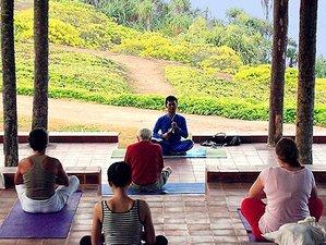 22 Days Yoga and Ayurveda Retreat in Sri Lanka