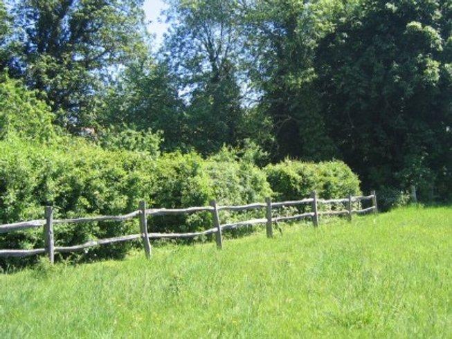 3 Days Yoga, Ayurvedic Massage and Nature Retreat in Kent