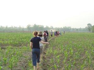 4 Days Adventure Safari in Chitwan National Park, Nepal
