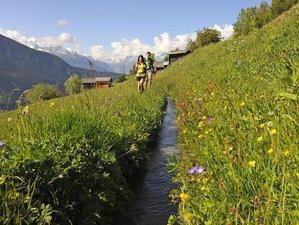 9 Days Cheese & Chocolate Holidays in Switzerland