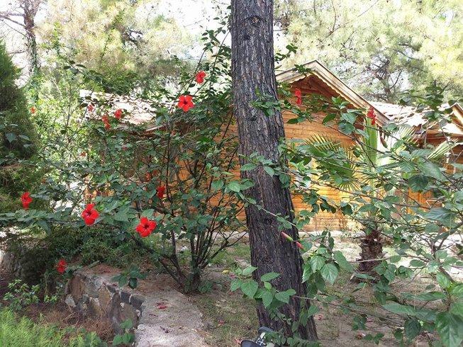 8 días retiro de yoga y detox de alma, cuerpo y mente en Mugla, Turquía
