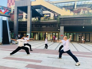 31 Days Traditional Chinese Martial Arts, Taichi, and Kung Fu Training in Shanghai, China