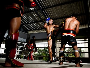 14 Days All Inclusive Muay Thai Camp Bangkok