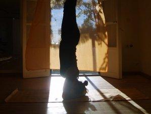 3-Daags Spring Fling Yoga Weekend Retreat in Sussex, Engeland