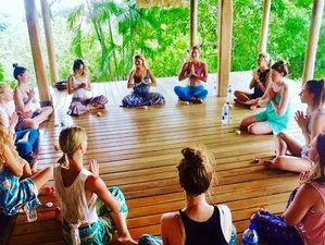 15 Day 200-Hour Yoga Teacher Training in Nosara, Costa Rica