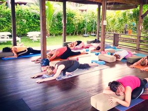 7 Days Relaxing Yoga Vacation in Koh Samui, Thailand