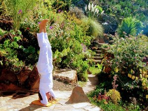 8 Day Private Detox and Wellness Retreat with daily Yoga on the Island of La Palma, Canaries