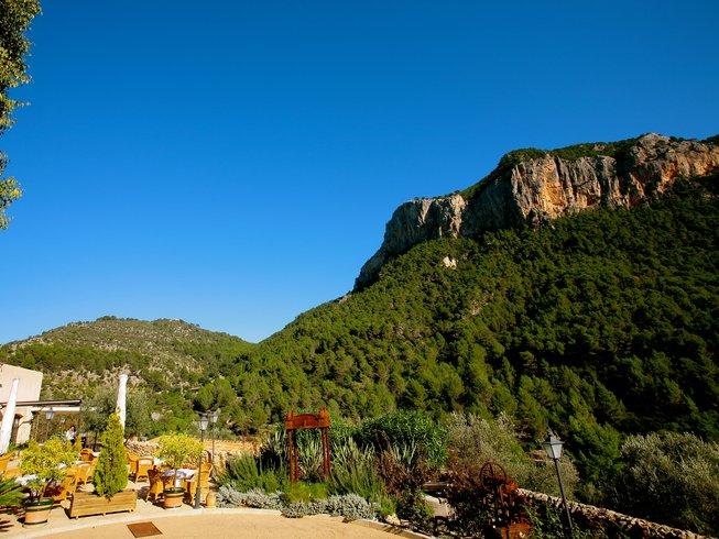 10 Days Mallorca Yoga Holidays and Vegan Food Tours