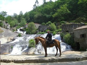 8 Day Portuguese Way Horse Riding Holiday in Portugal and Spain