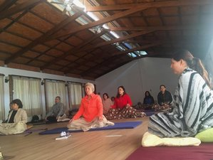 3 Day The Magic of Living: Silent Weekend Mindfulness Meditation Retreat in Morelos