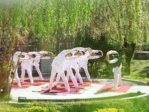 6 jours passionnants en stage de yoga à Dubai