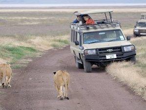 7 Days Authentic Tanzania- Northern Circuity Safari