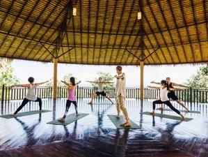 7 Days Help the Elephants Yoga Retreat in Thailand