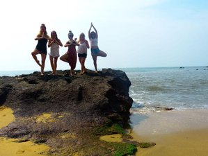 10 Tage Yoga Retreat in Goa, Indien