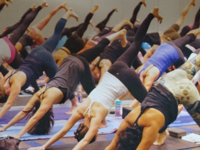 28 Days 200-Hour Props Yoga Teacher Training in Rishikesh, India