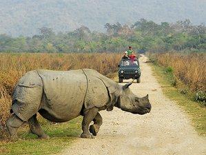 4-Daagse Wonderlijke Safari in Nationaal Park Bardia, Nepal