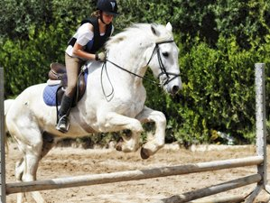 8 Day A La Carte Horse Riding Holiday in Mallorca, Balearic Islands
