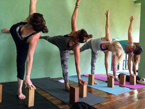 11 jours en retraite de yoga et méditation à Goa, Inde