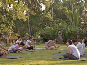 4-Daagse Wellness Spa en Yoga Retraite op Bali