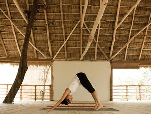 7 Days Summer Solstice Yoga Retreat in Mexico