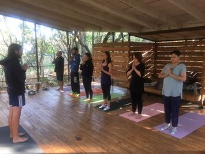 7 Days Yoga Retreat in the Drakensberg Mountains, South Africa