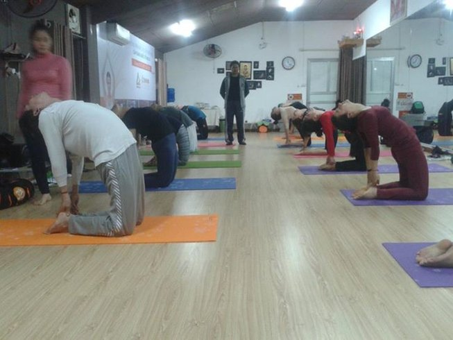 10 Days Meditation and Yoga Beginner Course in India