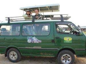 5 Days Chimp and Gorilla Safari in Uganda
