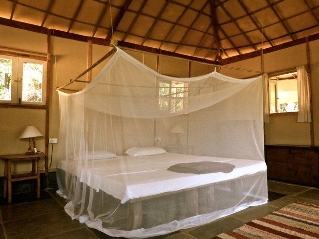 11 Days Sound, Creativity, and Yoga Retreat in India