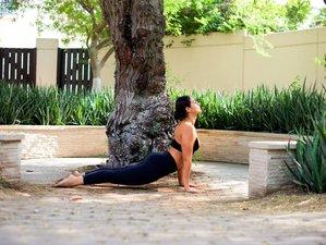8 Day The Sacred Temple Yoga and Meditation Retreat in Taranto, Apulia