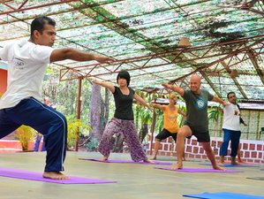 25 Days 200-Hour Yoga Teacher Training in Goa, India