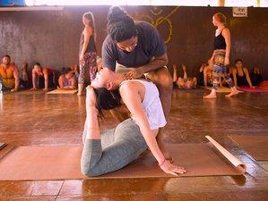 16 días, 100 horas de profesorado de yoga curso base en Goa, India