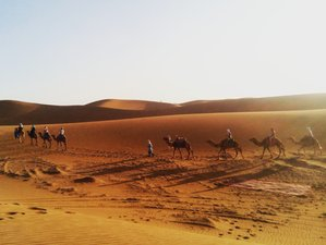 8 Day Yoga and Ayurveda Meet Desert Trip Holiday in Morocco