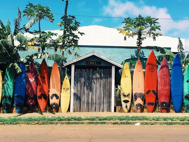 Surf schools