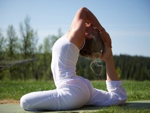 7 Days Upanishads and Yoga Retreat in Norway