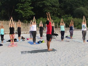 24 Days 200-Hours Ashtanga Yoga Teacher Training In Rishikesh, India