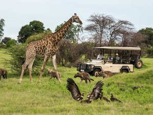 12 Days Ultimate Safari in Kenya and Tanzania