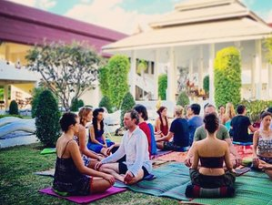 7 Days Detox and Silent Retreat with Meditation and Yoga in Thailand