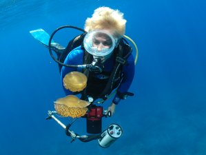 8 Days Scuba Diving and Yoga Holiday in Gozo, Malta