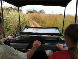 2 Days Tanzania Safari in Mikumi National Park