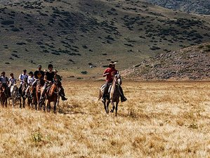 8 Days The Miyak's Tribe Trails Horse Riding Holiday in Macedonia