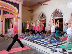 11 Days Kundalini Meditation and Yoga Retreat in India